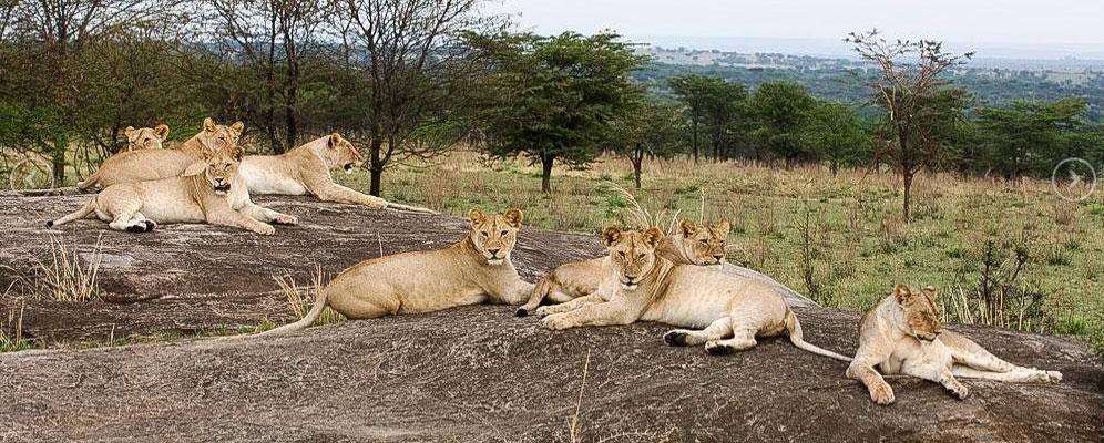 Africa Romantic Vacation Destinations