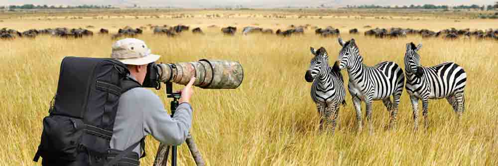 Safari Wildlife Photo Destinations