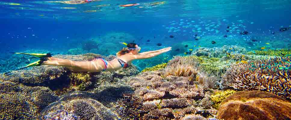 Best Snorkeling Sites in the World