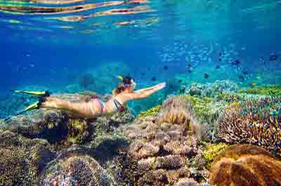 Snorkeling Vacations